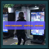 Somatosensory vertical machine