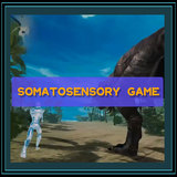 Somatosensory game