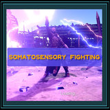 Somatosensory fighting
